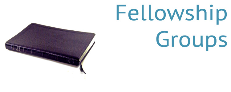 Weekly Fellowship Groups